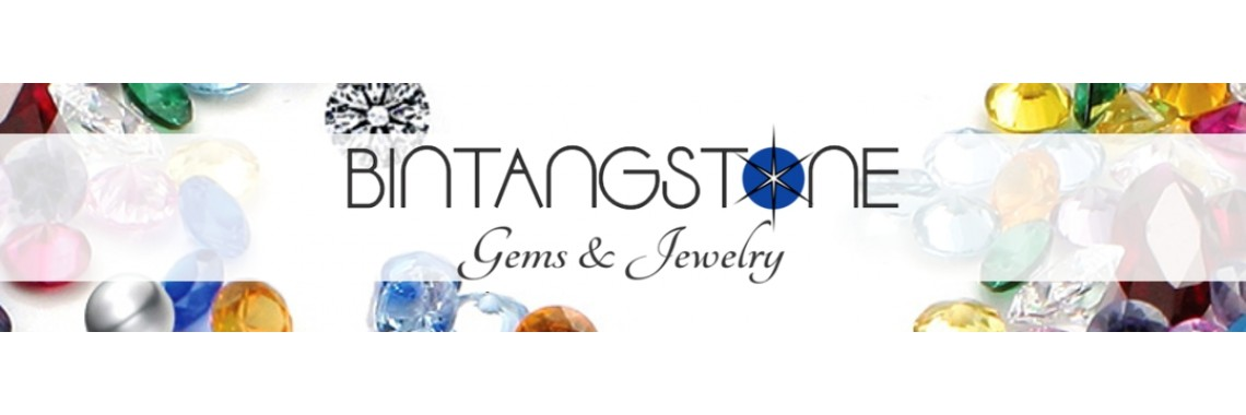 bintangstone n fashion logo