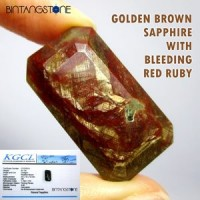 Certified Golden Brown Sapphire With Bleeding Red Ruby Africa 81.0 Ct Rare Batu Cincin Natural Asli Unik Emas Coklat Merah Darah Memo Sertifikat