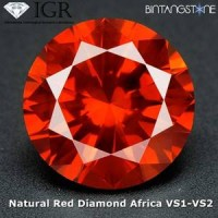 Diamond Red Diamond VS 1.5 Mm 0.015 Cts Certified IGR Natural Africa Berlian Merah Asli Sertifikat ID1222
