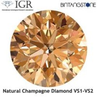 Diamond Champagne Diamond 1.6 mm Clarity VS Certified By IGR Natural Africa Berlian Aslli Sertifikat ID1224