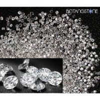 Diamond Eropa 100% Natural Purity VS-SI Diameter 1-1.1mm Berlian Asli Colorless White 1 Pcs