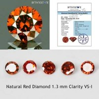 Diamond 1.3 mm Red Diamond 0.01 Cts Clarity VS-I Natural Africa Berlian Merah Asli 1 pcs