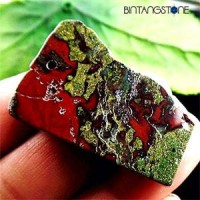 Dragon Bloodstone Africa Natural 67.55 Cts Pendant Blood Red Green Rectangle Liontin Batu Alam Asli Bentuk Kotak